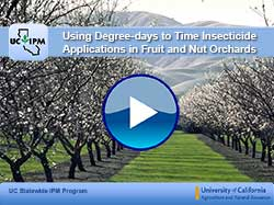 first degree-days video: using degree-days to time insecticide applications