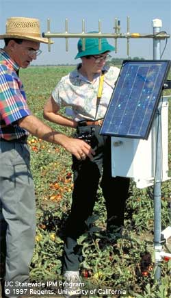 Chuck Rivara and Janet Anderson examine weather station in tomato field.