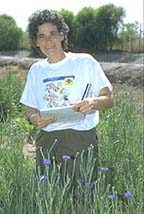 PM Advisor Cheryl Wilen monitoring field-grown cornflowers