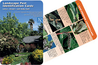 Landscape ID Cards