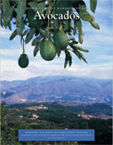 Photo of cover of the book, Integrated Pest Management for Avocado.