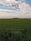 Integrated Pest Management for Rice