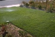 Don�t allow water from sprinklers to run off the lawn.