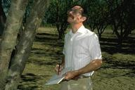 Monitoring almond orchard.