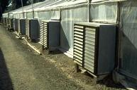 Outside view of greenhouse ventilation fan boxes with louvered covers.