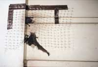 A mesh net is a simple way to exclude bats from a structure.