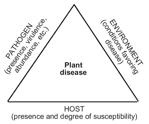 The disease triangle. All components must be present for disease to occur.