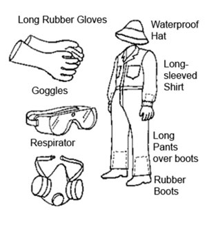 Protective Clothing and Equipment.